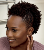 2011 natural black women hairstyle with small braids.PNG