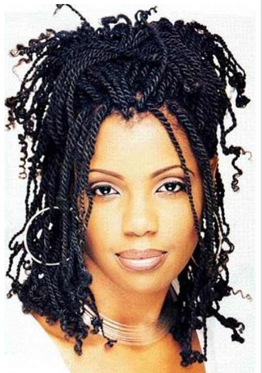 Black Women Braided Hairstyle Picture.PNG