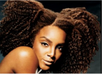 Very cool African American women hairstyle with full of small curls.PNG