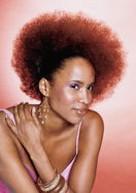 african american natural hairstyles.jpg