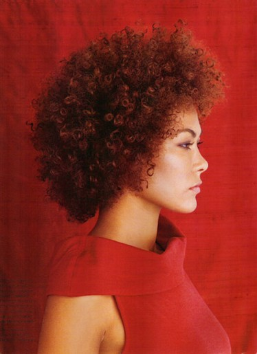 Fashion Afro Curly Hairstyle For Women