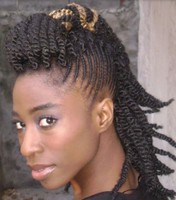 natural black women hairstyle with braids