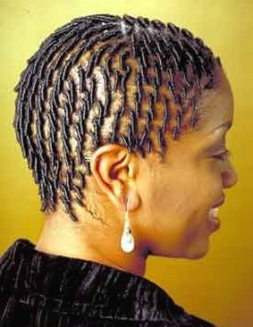 women black braided hairstyle.jpg picture