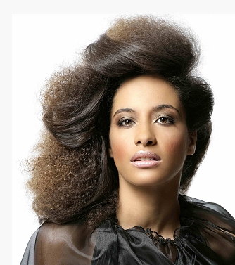 Black Women Updo Hairstyle Pictures Png