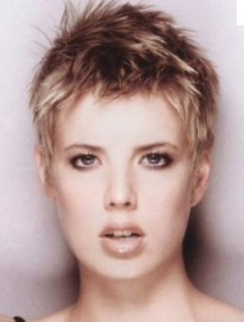 2013 Layered Very Short Women Haircuts Picture Png