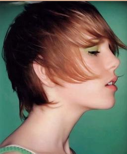 Pleasing Young Short 2010 Women Hairstyle With Rich Layers Png Short Hairstyles Gunalazisus